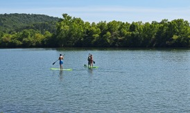 paddle-boarding-2455842_1920